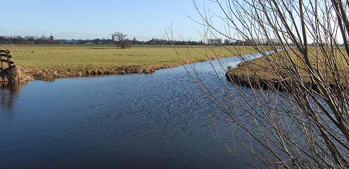natuur-water_project-kadijk-west-720x350.jpg